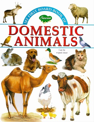 my firest book of - domestic animals